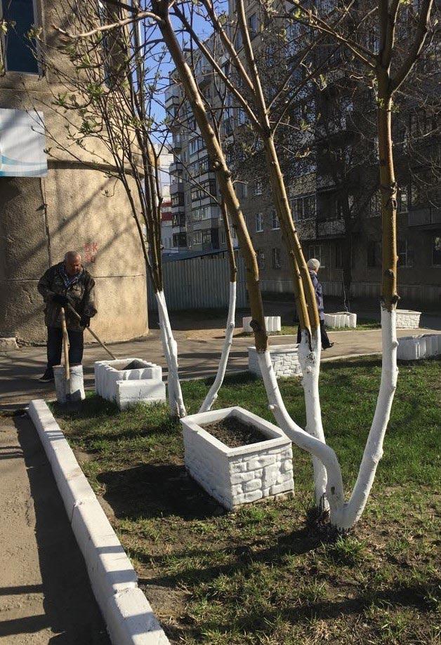 Субботник в КГБУЗ «Стоматологическая поликлиника № 2, г. Барнаул»